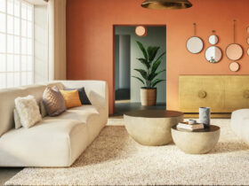 poly and bark living room collection sodafine
