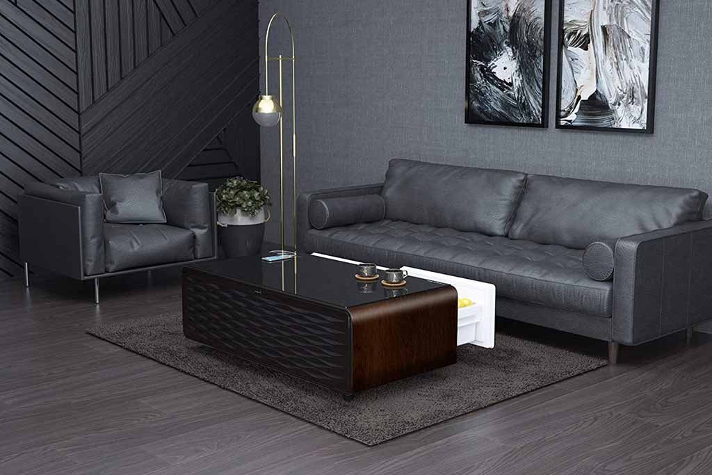 cooler coffee tables 5